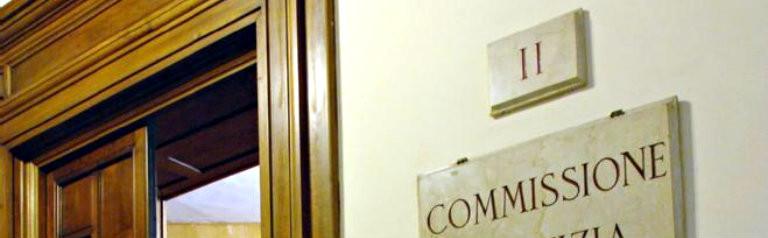 I miei interventi nelle commissioni