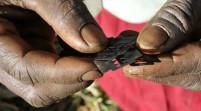 La mia mozione contro il fenomeno delle mutilazioni genitali femminili in Italia