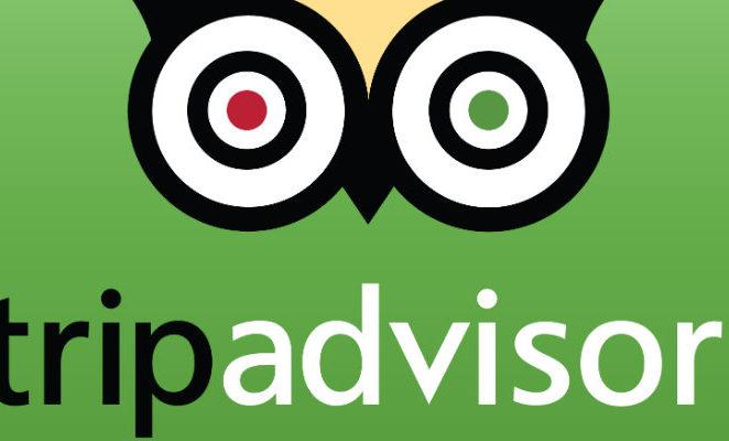 Inqualificabile la recensione su Tripadvisor di chi si lamenta per la presenza di disabili in vacanza
