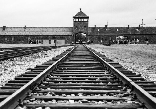 Frasi antisemite nefandezza inaudita, rafforzare ruolo scuola